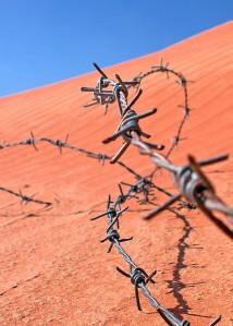 barbwire desert